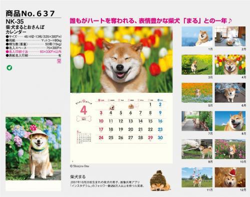 <span>No637</span>NK-35<br>柴犬まるとおさんぽカレンダー